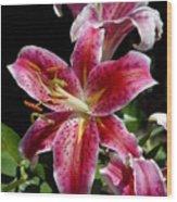 Flowers 733 Wood Print