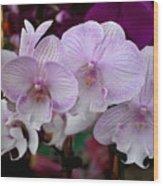 Flowers 824 Wood Print