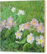 Flowers Along The Edge 1006 Wood Print