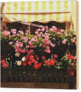 Flowers And Awning In Venice Wood Print