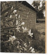 Flowers And Walls Wood Print