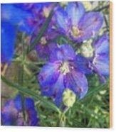 Flowers Blooming Wood Print