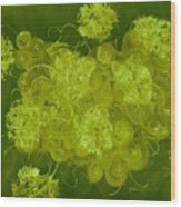 Flowers, Buttons And Ribbons -shades Of Chartreuse Wood Print