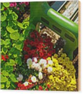 Flowers By Green Bench Wood Print