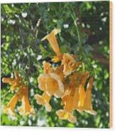 Flowers  Wood Print by Denise Ellis