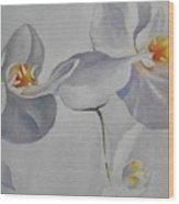 Flowers Frame 2 Wood Print