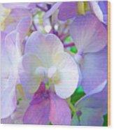 Flowers Hydrangeas Art Prints Floral Garden Baslee Troutman Wood Print