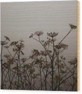 Flowers In California Fog Wood Print