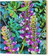 Flowers In Seville. Spain.  Wood Print