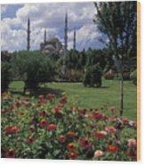Flowers In Sultanahmet Square Wood Print