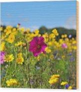 Flowers In The Field Wood Print
