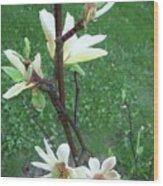 Flowers In The Rain Wood Print