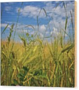 Flowers In The Wheat Wood Print