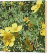 Flowers In The Yard Wood Print