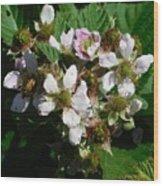 Flowers Of Berries Wood Print