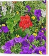 Flowers Of Bethany Beach - Petunias Wood Print