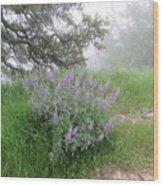 Flowers On A Foggy Day Wood Print