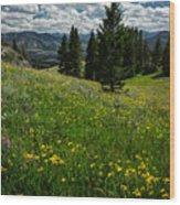Flowers On The Hillside Wood Print