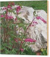 Flowers On The Rocks Wood Print
