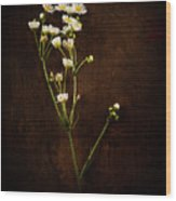 Flowers On Wood Wood Print