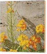 Flowers Orange Wood Print by Warren Thompson