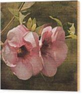 Flowers - Purple Allamanda 2 Wood Print