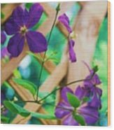 Flowers Purple Wood Print