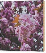 Leeds Pink Flower Wood Print