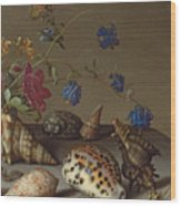 Flowers, Shells And Insects On A Stone Ledge Wood Print