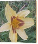 Flowers2 Wood Print