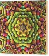 Flowerscales 62 Wood Print