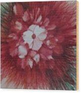 Flowerscape Just Beginning Wood Print
