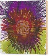 Flowerscape Thistle Wood Print