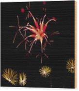Flowerworks #10 Wood Print