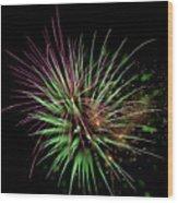 Flowerworks #11 Wood Print
