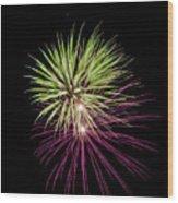 Flowerworks #14 Wood Print