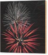 Flowerworks #3 Wood Print