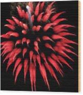 Flowerworks #31 Wood Print