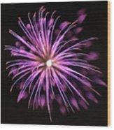 Flowerworks #36 Wood Print