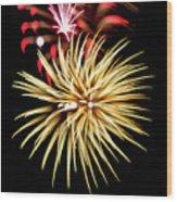 Flowerworks #40 Wood Print