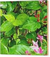 Flowery Flope Wood Print