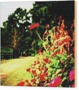 Flowery Path Wood Print