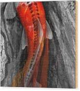 Flowing Koi Wood Print