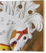 Flowing Mane 1 Wood Print