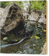 Flowing Stream Wood Print