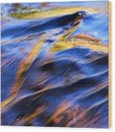 Flowing Water In Fall Wood Print