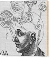 Fludds Mental Faculties, 1617 Wood Print