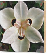 Fluid Flower Wood Print
