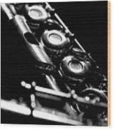 Flute Series IIi Wood Print