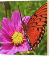 Fritillary Flutterby Wood Print